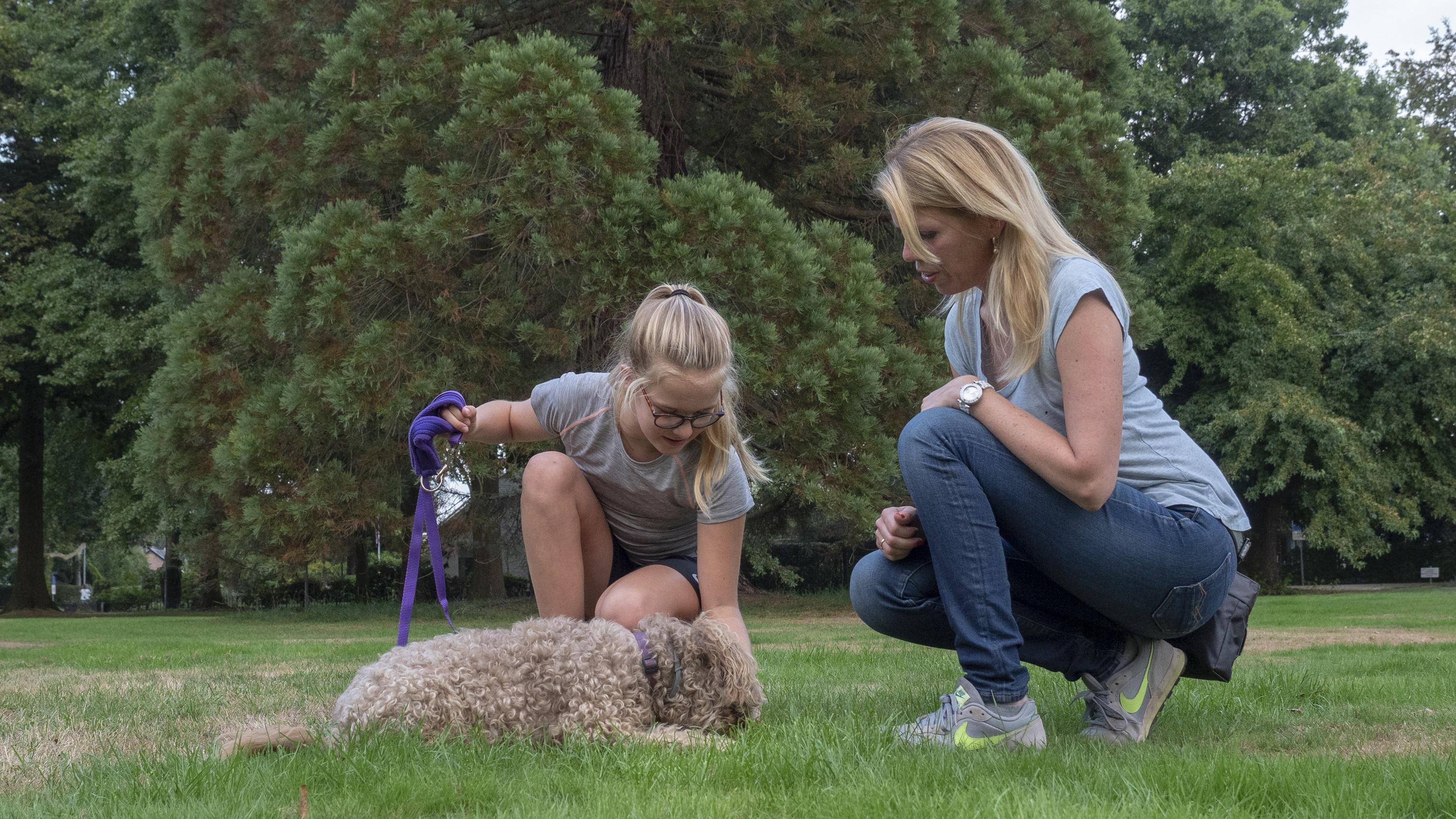 Volwassen hondentraining aan huis